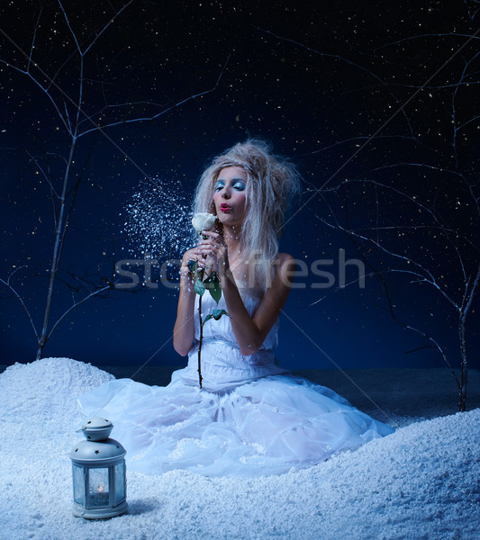 frozen fairy with rose Stock photo © zastavkin