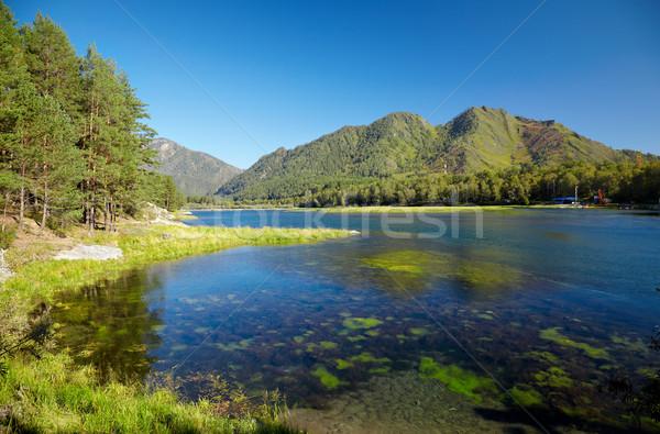 Zbiornik wody krajobraz elektrownia drzewo górskich Zdjęcia stock © zastavkin