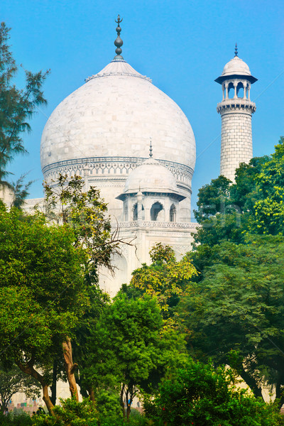 Cupola of Taj Mahal Stock photo © zastavkin
