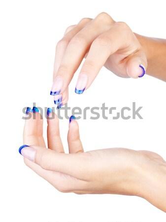 Blue french manicure Stock photo © zastavkin