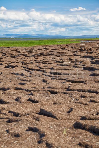Peat banks of river Kolyma Stock photo © zastavkin