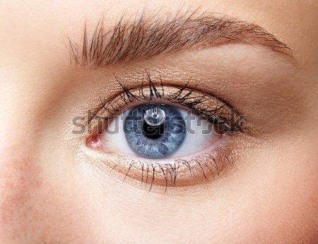 eye shade makeup Stock photo © zastavkin