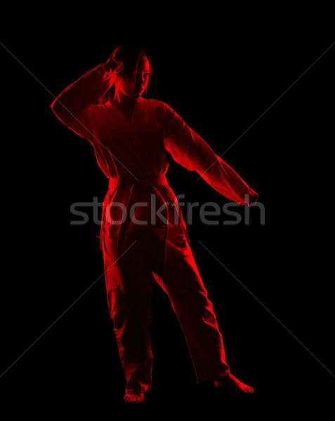 Karaté fille silhouette portrait belle arts martiaux Photo stock © zastavkin