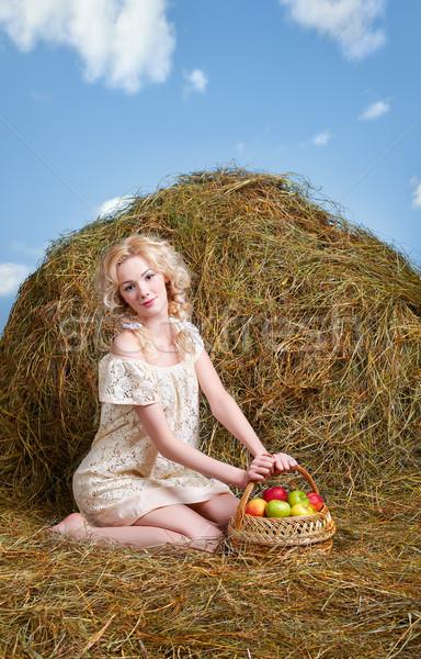 Vidéki lány széna portré gyönyörű szőke nő pózol Stock fotó © zastavkin