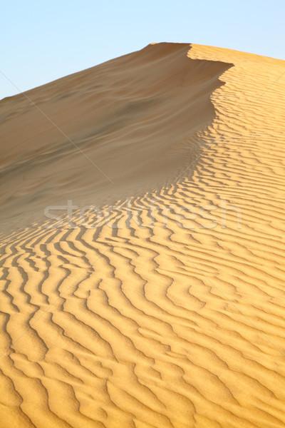 Sand dunes Stock photo © zastavkin