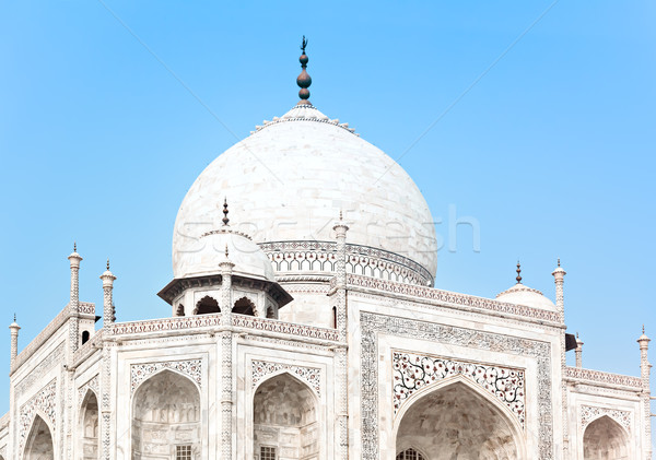 Taj Mahal in India, detail Stock photo © zastavkin