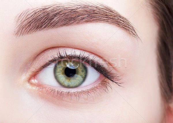 female eye zone and brows with day makeup Stock photo © zastavkin