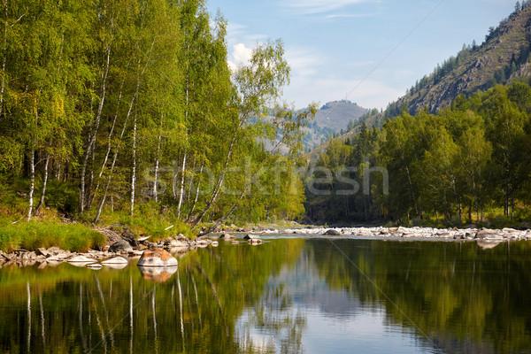 Altai river Kumir Stock photo © zastavkin