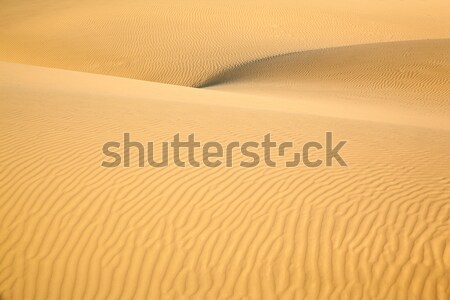 Areia deserto textura natureza paisagem fundo Foto stock © zastavkin
