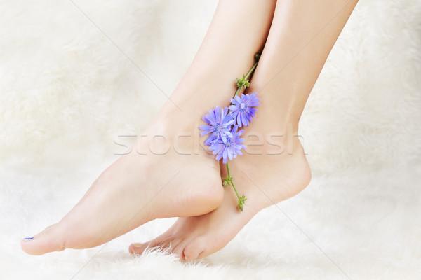 healthy legs and flower Stock photo © zastavkin