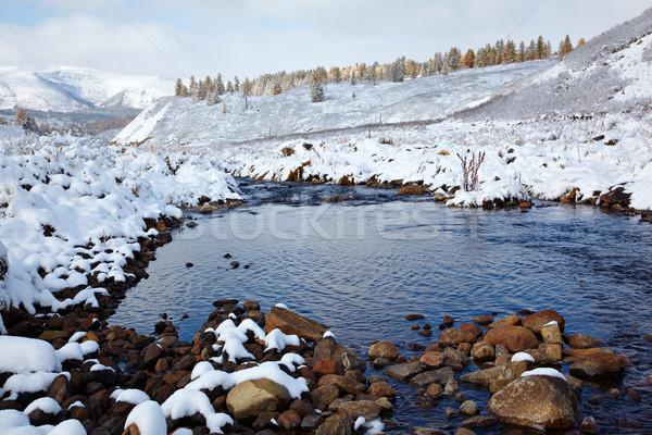 Hó kilátás erdő égbolt természet tél Stock fotó © zastavkin