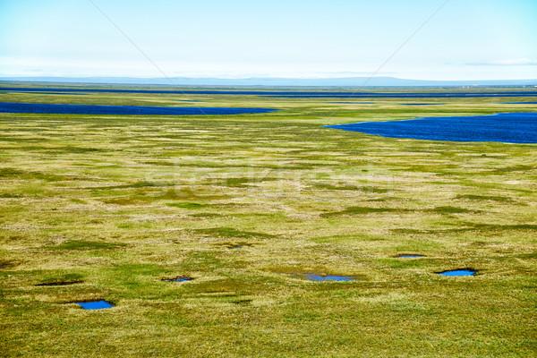 Tundra landscape in the north of Yakutia Stock photo © zastavkin