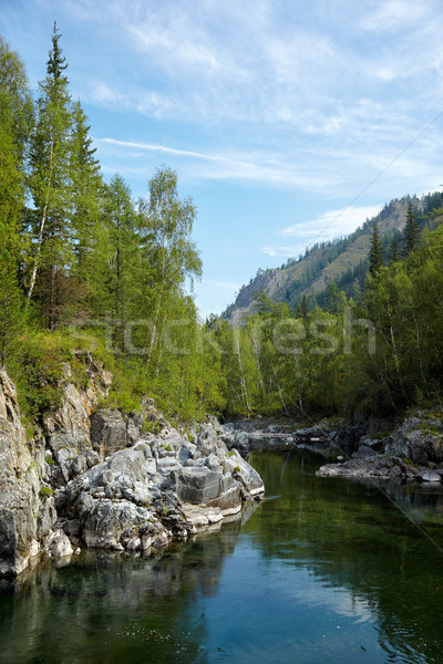 Altai river Kumir Stock photo © zastavkin
