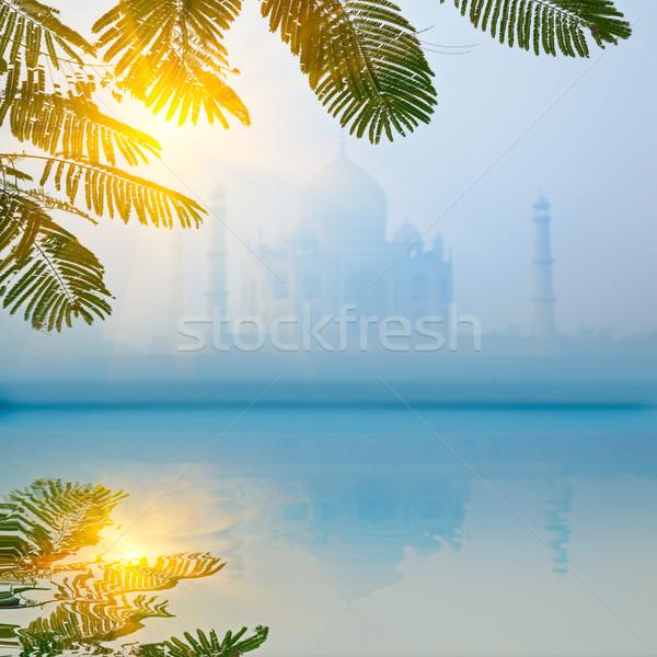 Photo stock: Taj · Mahal · matin · brouillard · réflexion · brouillard · ciel