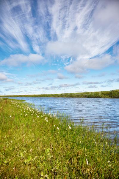 Meadow near river Stock photo © zastavkin