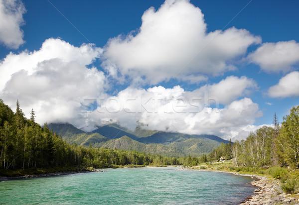 Altai river Katun Stock photo © zastavkin