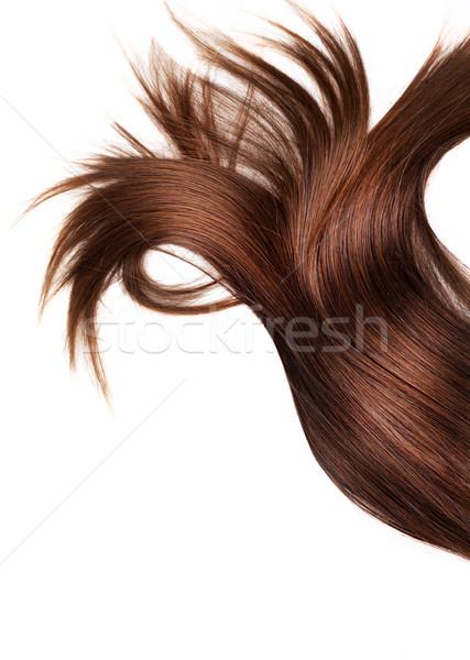 Egészséges haj emberi barna haj fehér izolált Stock fotó © zdenkam