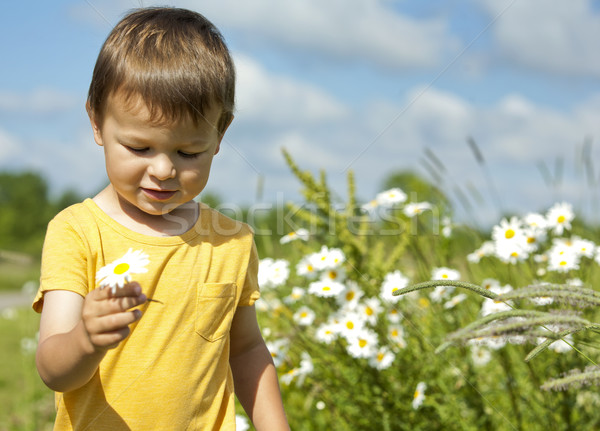 toddler carrying a flower Stock photo © zdenkam
