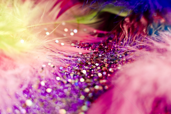 macro shot of feather and glitter Stock photo © zdenkam