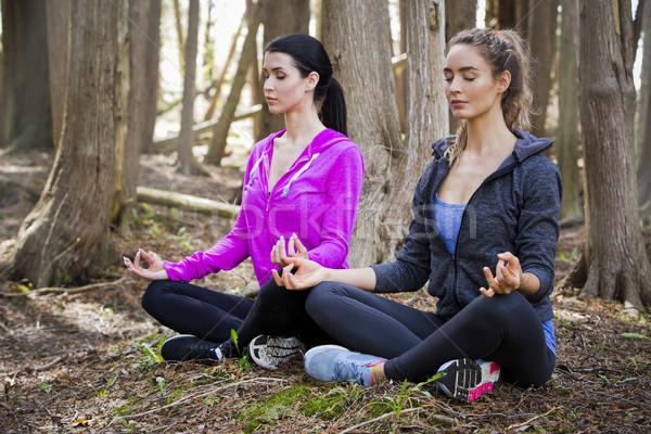 Dwie kobiety jogi lesie młodych dopasować Zdjęcia stock © zdenkam