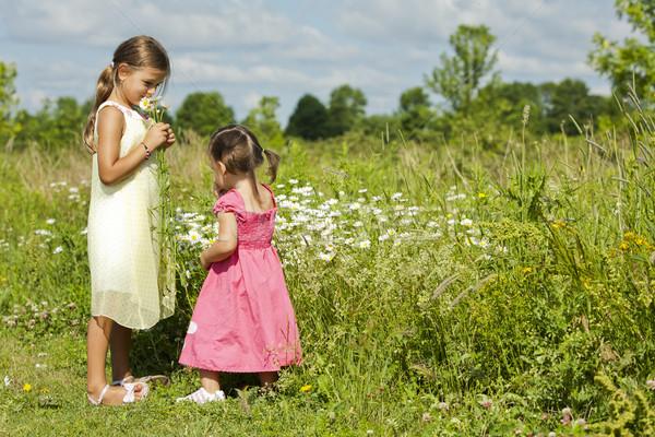 girls smelling flower Stock photo © zdenkam