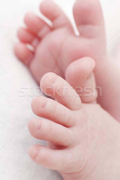 ребенка ног микро свет тело Сток-фото © zdenkam