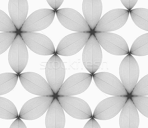 Monochrome gray striped six pedal flowers Stock photo © Zebra-Finch