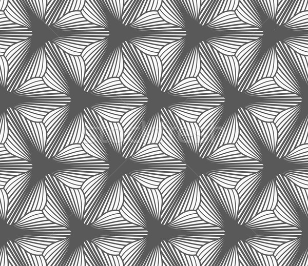 Monochrome gradually striped three pedal flowers Stock photo © Zebra-Finch