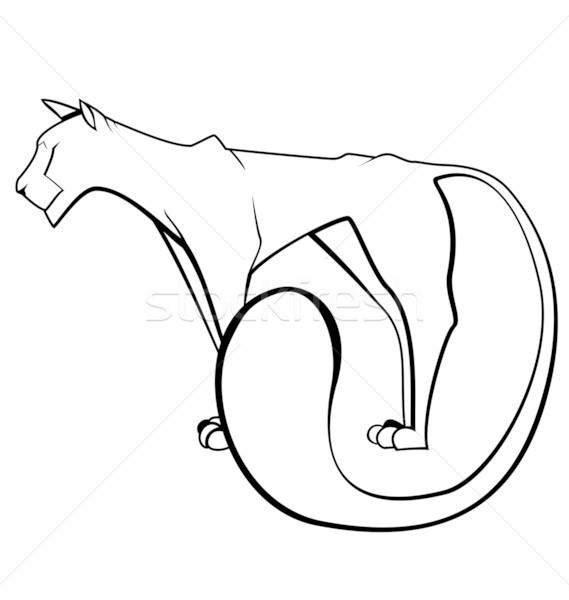 черно белые Panther вектора изолированный белый Сток-фото © Zebra-Finch