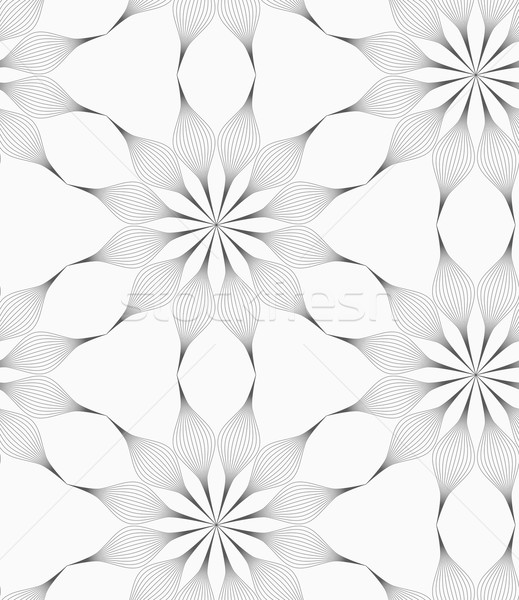 Gray eight pedal geometrical flower Stock photo © Zebra-Finch