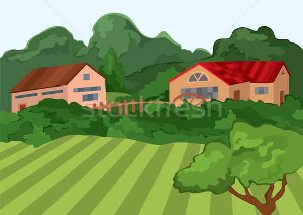 Rajz falu házak zöld mező fák Stock fotó © Zebra-Finch