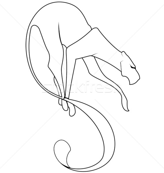 Black and white panther tail vector Stock photo © Zebra-Finch