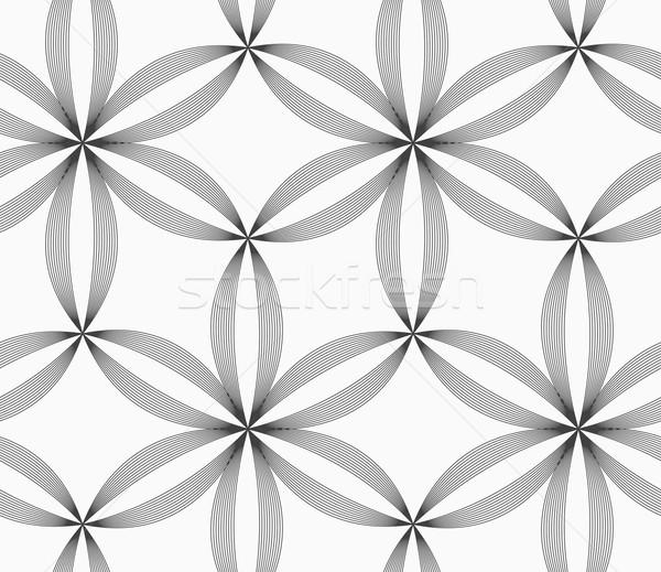Monocromático esbelto cinza listrado seis flores Foto stock © Zebra-Finch