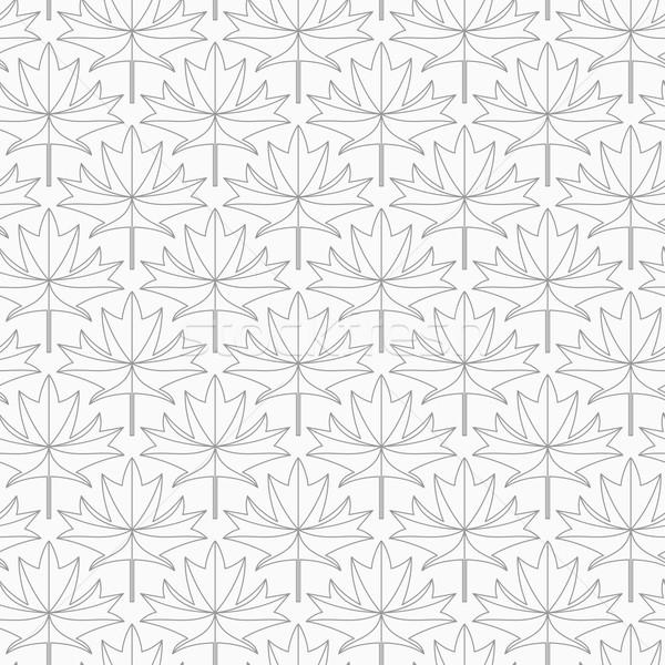 スリム グレー メイプル 葉 静脈 スタイリッシュ ストックフォト © Zebra-Finch