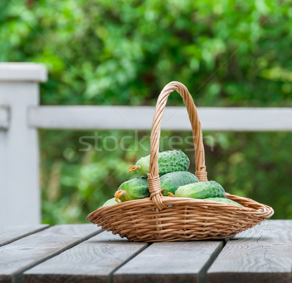 Cucumbers in a basket on  background of nature Stock photo © zeffss