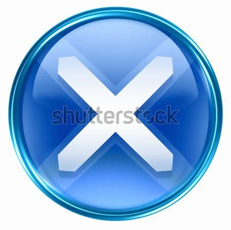 Sluiten icon Blauw geïsoleerd witte licht Stockfoto © zeffss