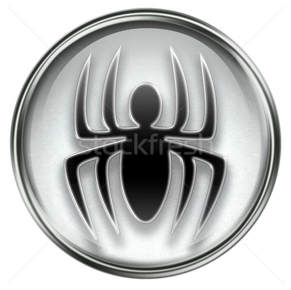 Virus icon grey Stock photo © zeffss