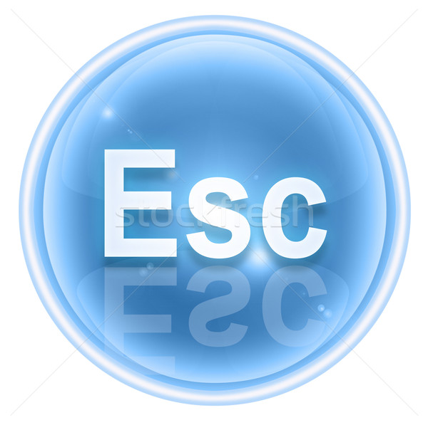 Esc icon ice, isolated on white background Stock photo © zeffss