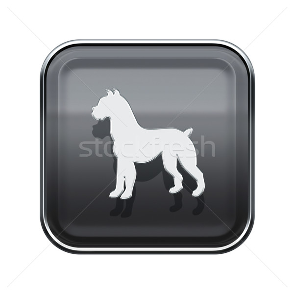 Dog Zodiac icon grey, isolated on white background. Stock photo © zeffss