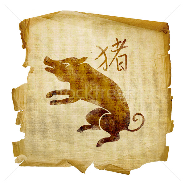 Pig Zodiac icon, isolated on white background. Stock photo © zeffss