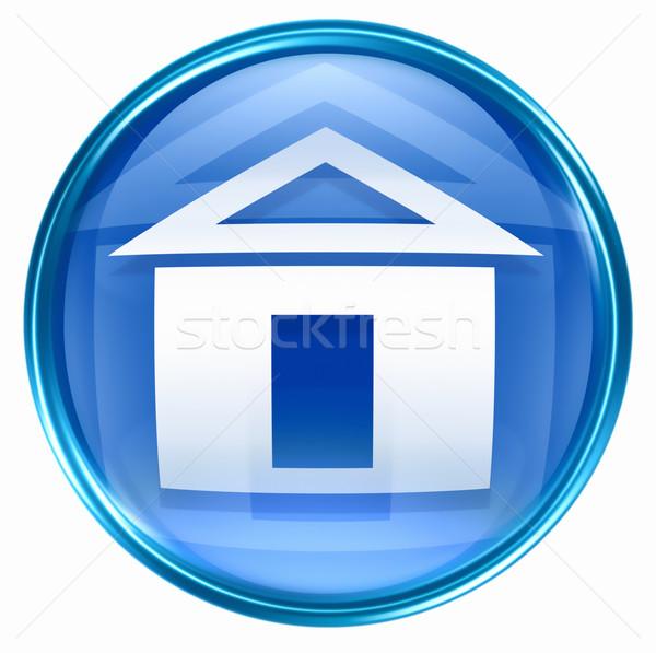 Home icon Blauw geïsoleerd witte business Stockfoto © zeffss