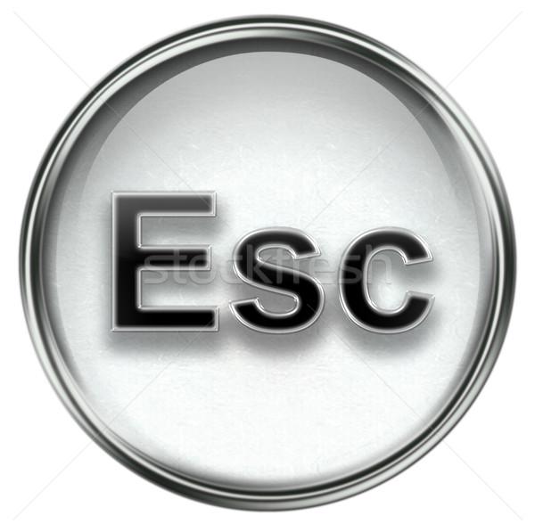 Esc icon grey Stock photo © zeffss