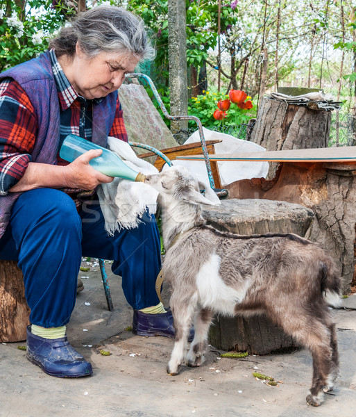 Farmer feeding a baby goat with a milk bottle  Stock photo © zeffss