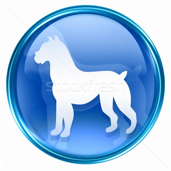 Dog Zodiac icon blue, isolated on white background. Stock photo © zeffss