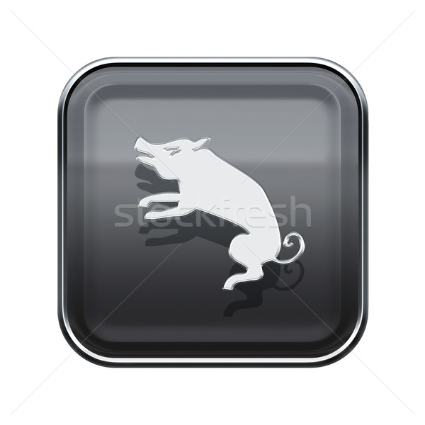 Pig Zodiac icon grey, isolated on white background. Stock photo © zeffss