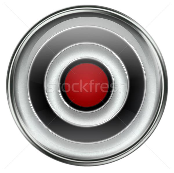Record icon grey Stock photo © zeffss