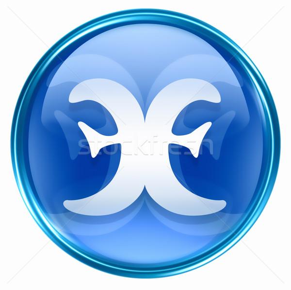 Pisces zodiac button icon, isolated on white background. Stock photo © zeffss