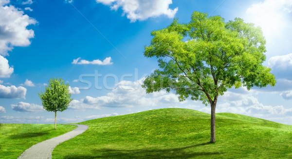 Idylliczny krajobraz mętny niebo trawy golf Zdjęcia stock © Zerbor