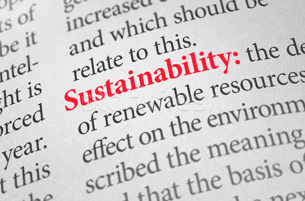 Definition of the word Sustainability in a dictionary Stock photo © Zerbor
