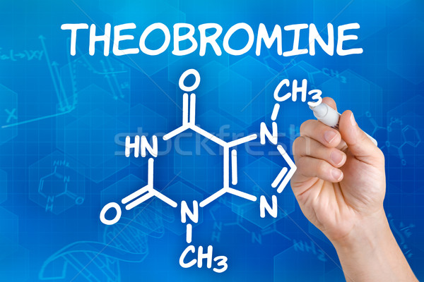 Hand with pen drawing the chemical formula of theobromine Stock photo © Zerbor